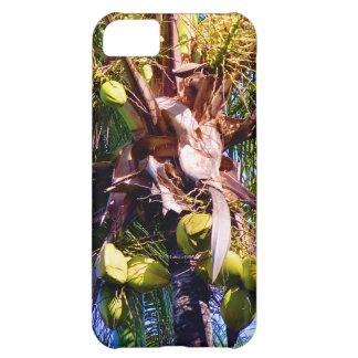 Coconut Bliss iPhone 5C Case