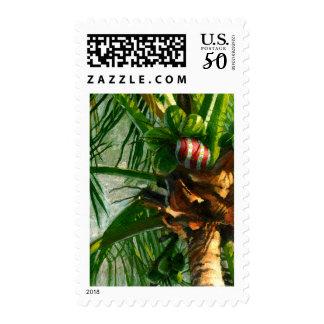Coconut Christmas postage stamp