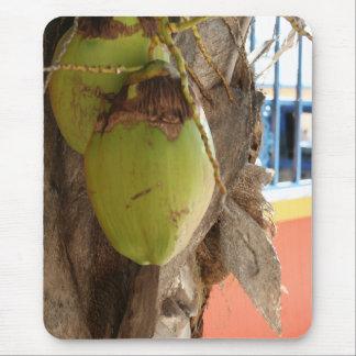 Coconut Dreams Mouse Pad