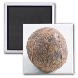 Coconut For use in USA only.) 2 Inch Square Magnet