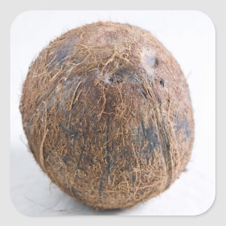 Coconut For use in USA only.) Stickers