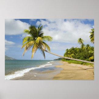 Coconut Grove Beach at Cades Bay, with St. 2 Print
