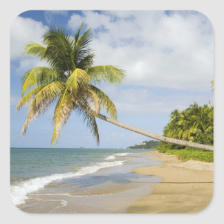 Coconut Grove Beach at Cades Bay, with St. 2 Stickers