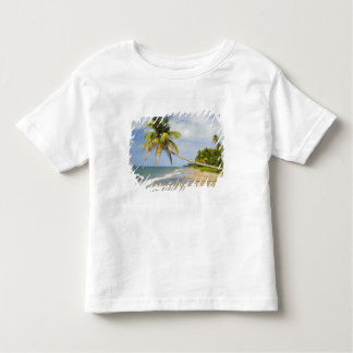 Coconut Grove Beach at Cades Bay, with St. 2 Toddler T-shirt
