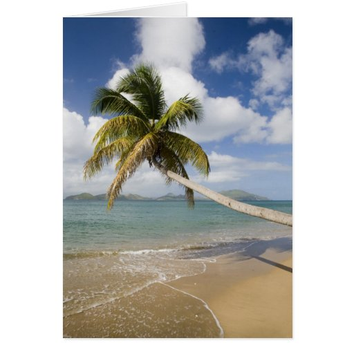 Coconut Grove Beach at Cades Bay, with St. Greeting Card