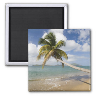 Coconut Grove Beach at Cades Bay, with St. Magnet