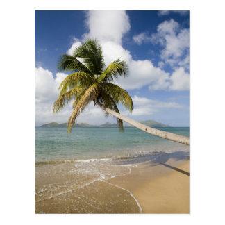 Coconut Grove Beach at Cades Bay, with St. Postcard