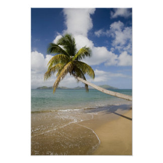 Coconut Grove Beach at Cades Bay, with St. Poster