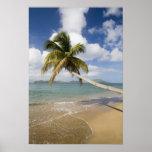 Coconut Grove Beach at Cades Bay, with St. Print