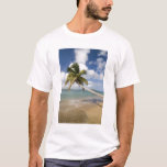 Coconut Grove Beach at Cades Bay, with St. T-Shirt