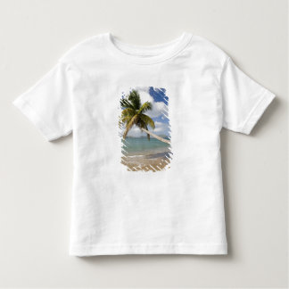 Coconut Grove Beach at Cades Bay, with St. Toddler T-shirt