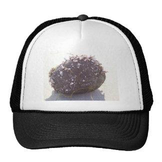 coconut mesh hats