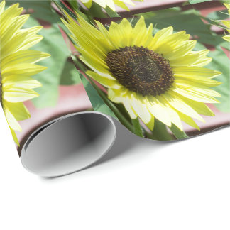 Coconut Ice Sunflower Wrapping Paper