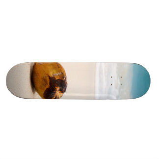 Coconut on a tropical beach skateboard deck