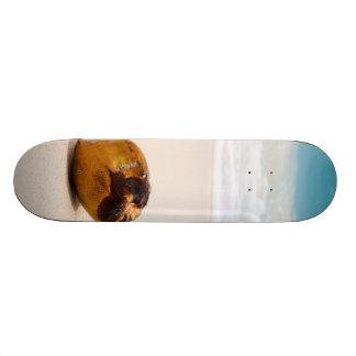 Coconut on a tropical beach skateboard deck