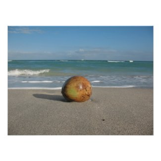COCONUT ON THE BEACH (5) Poster