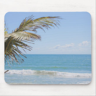 Coconut Palm and Blue Sea Beach Photography Mouse Pad