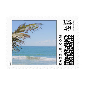 Coconut Palm and Blue Sea Beach Photography Stamps