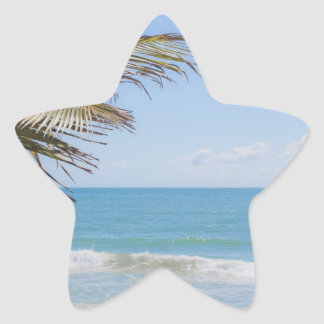 Coconut Palm and Blue Sea Beach Photography Star Sticker