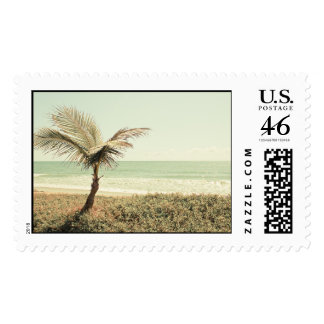 Coconut Palm and Pastel Beach Photography Stamp