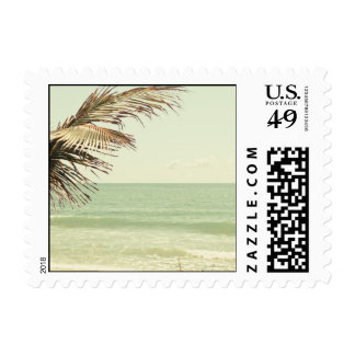 Coconut Palm and Pastel Beach Photography Postage Stamp