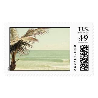 Coconut Palm and Pastel Beach Photography Postage
