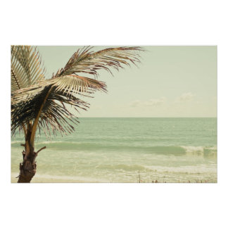 Coconut Palm and Pastel Beach Photography Poster