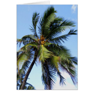 Coconut Palm Card