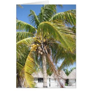 Coconut Palm Card