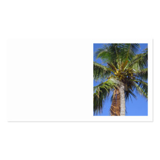 Coconut Palm Forest Business Card