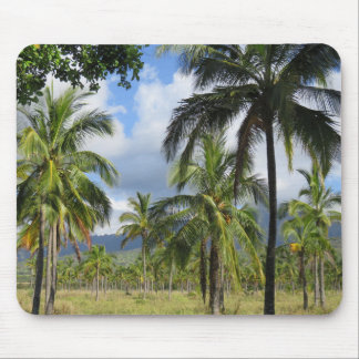 Coconut Palm Forest Mouse Pad