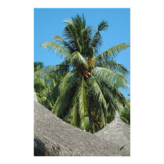 Coconut palm-tree flyer