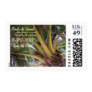 Coconut Palm Tree Hawaii Custom Stamps
