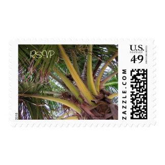 Coconut Palm Tree Hawaii Custom Stamps Postage