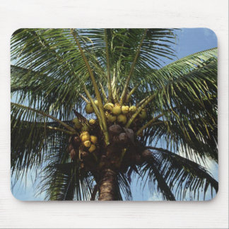 Coconut Palm Tree Mouse Pad