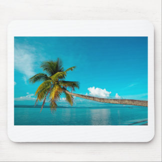 Coconut palm tree on tropical paradise beach mouse pad