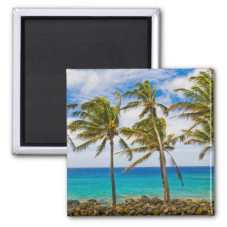 Coconut palm trees (Cocos nucifera) swaying in 2 Inch Square Magnet