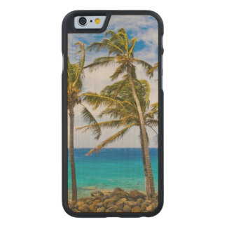 Coconut palm trees (Cocos nucifera) swaying in Carved Maple iPhone 6 Case