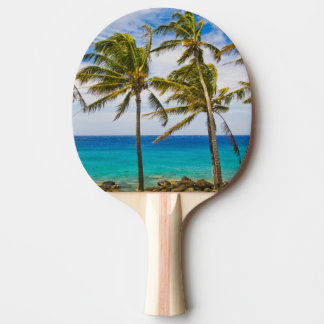 Coconut palm trees (Cocos nucifera) swaying in Ping-Pong Paddle