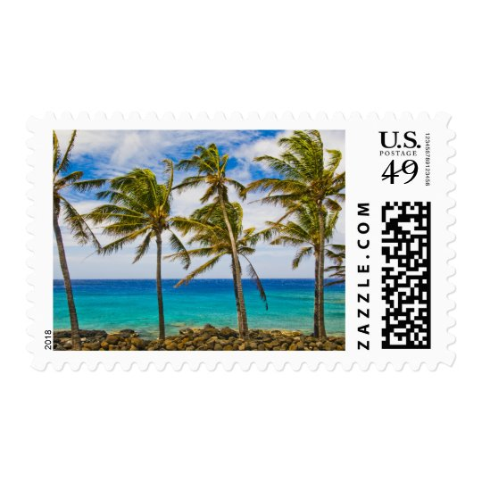 Coconut palm trees (Cocos nucifera) swaying in Postage