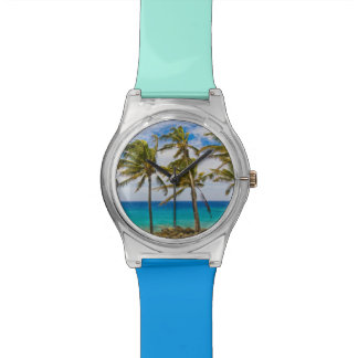 Coconut palm trees (Cocos nucifera) swaying in Watches