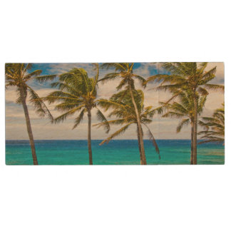 Coconut palm trees (Cocos nucifera) swaying in Wood Flash Drive