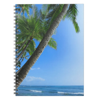 Coconut Palms Notebook
