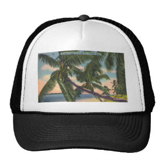 Coconut Palms on South East Florida Coast Mesh Hat
