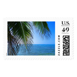 Coconut Palms Postage