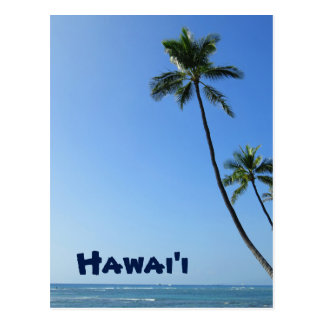 Coconut Palms Postcard