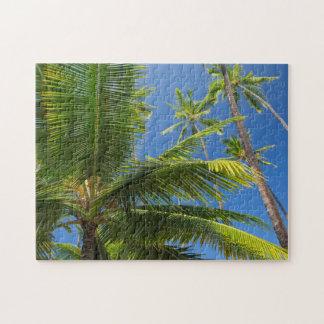 Coconut palms, Pu'uhonua o Honaunau 1 Jigsaw Puzzle