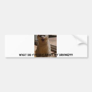 Coconut the cat on the road car bumper sticker