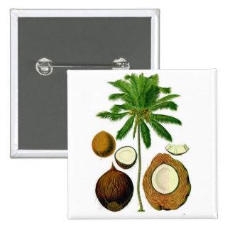 Coconut Tree Botanical Illustration Buttons