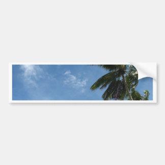 Coconut tree bumper sticker